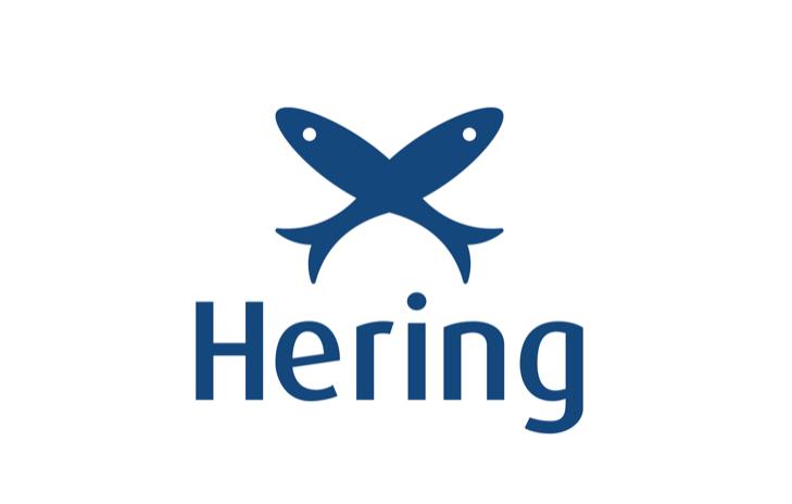 Museu Hering em Blumenau: Logo