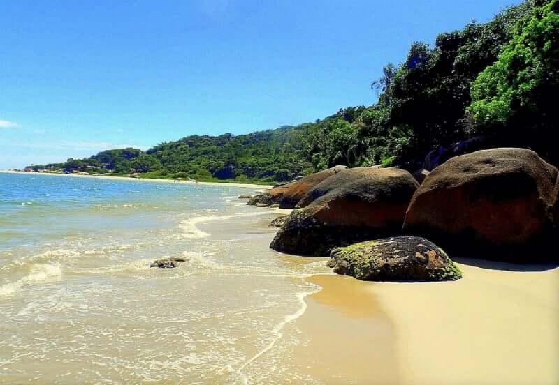 Praia da Daniela em Florianópolis